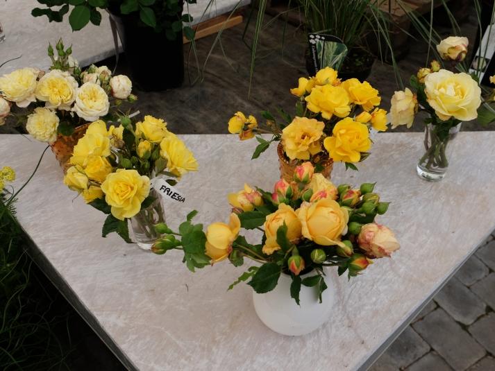 roser i vaser gule