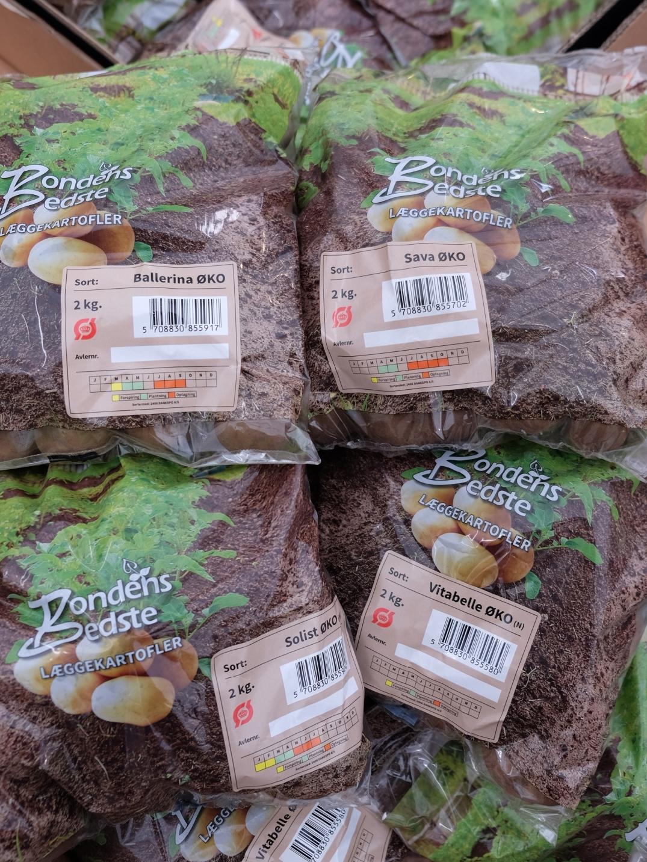 øko-kartofler