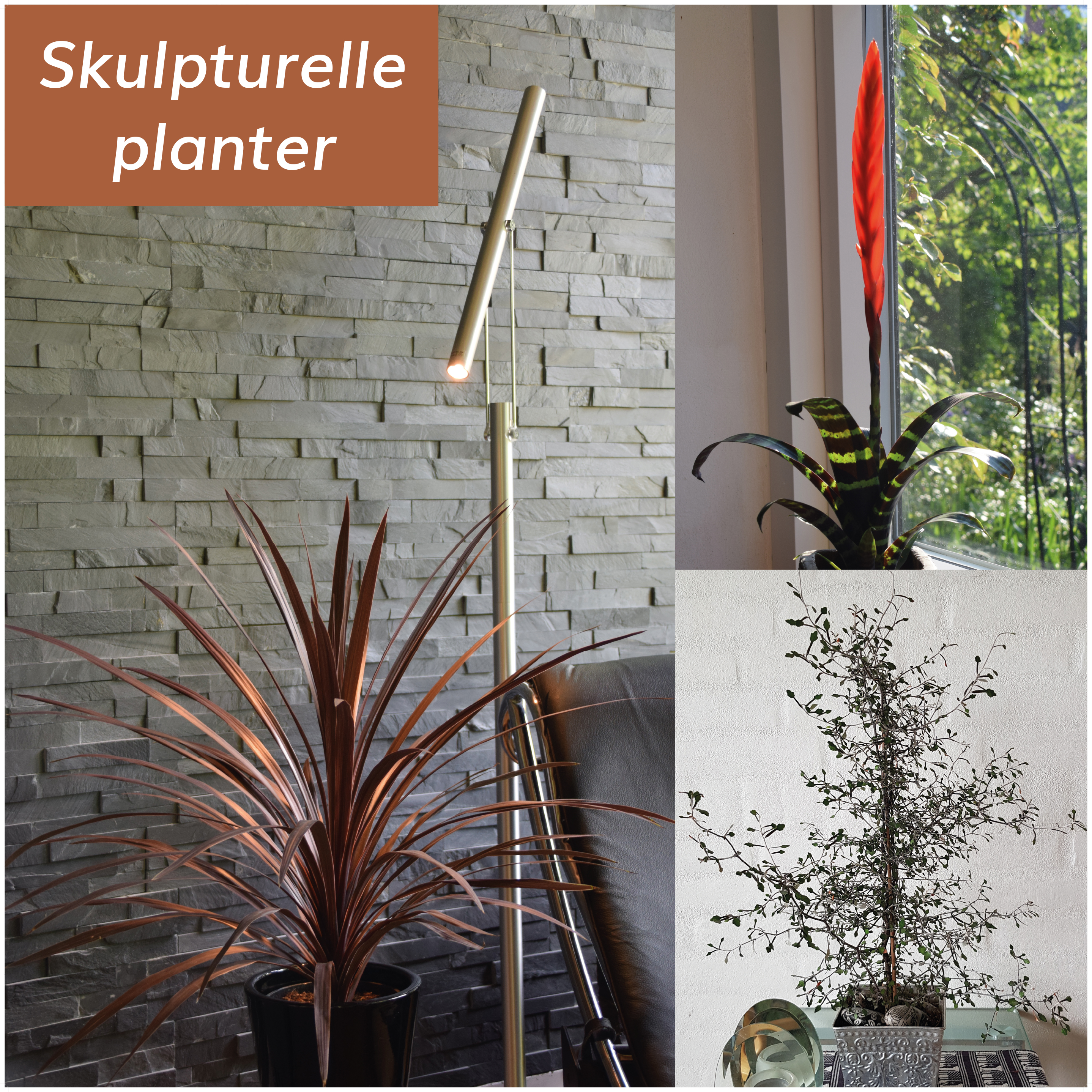 skulpturelle stueplanter